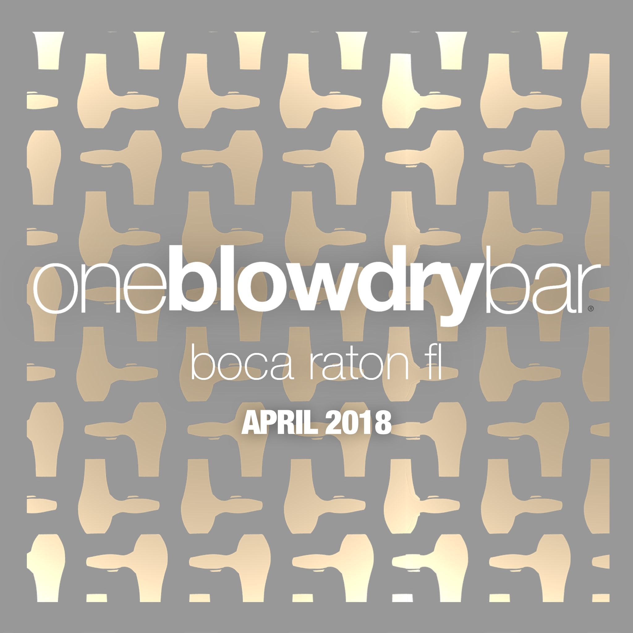 oneblowdrybar in boca raton fl is the most luxurious blow dry bar in Florida